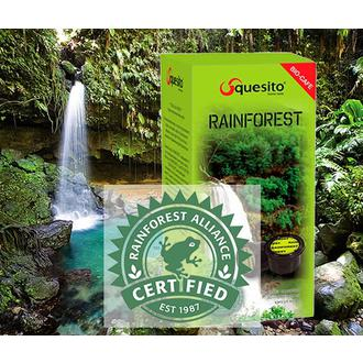 Squesito Rainforest